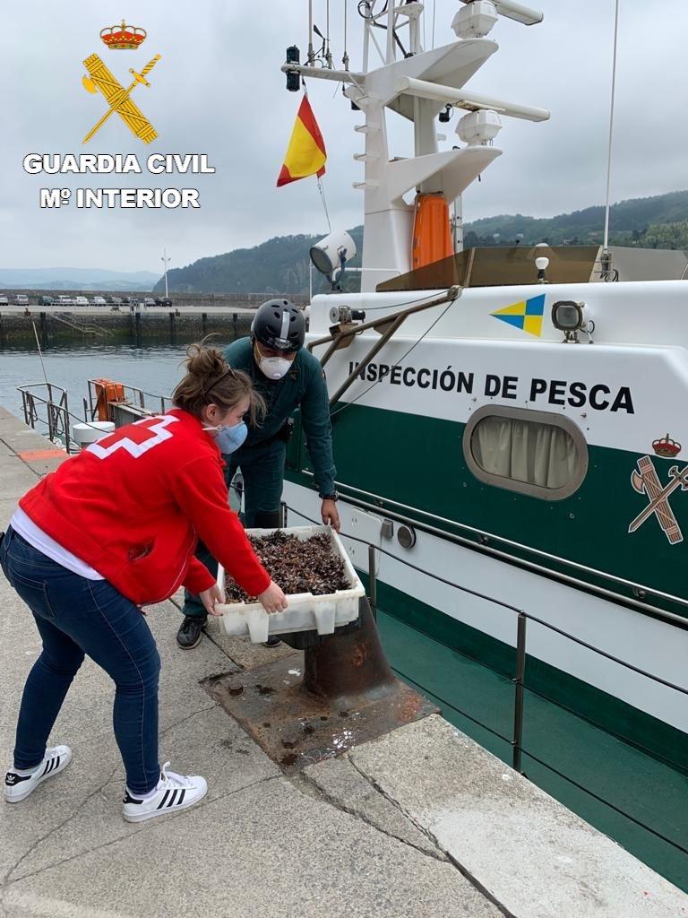 Denunciado un pesquero por captura ilegal de marisco en Orio