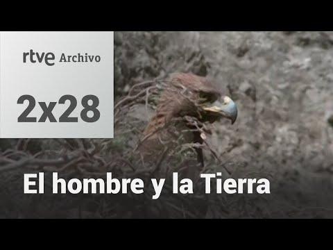 """Para recordar siempre """"El hombre y la tierra: El águila real"""""""