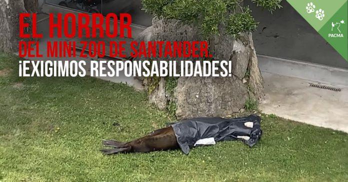 Exigimos al Ayuntamiento de Santander responsabilidades sobre el zoo de la Magdalena